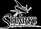 sponsor-foundation.png